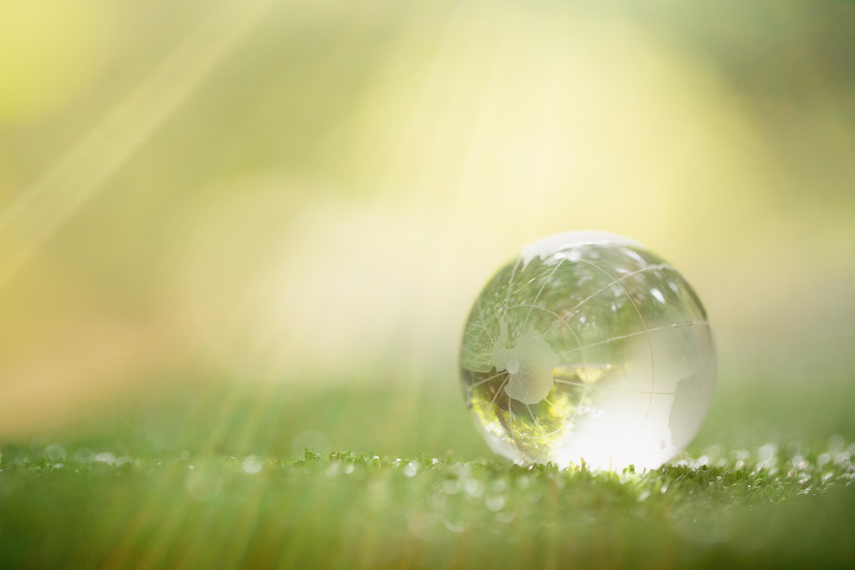 Међународни еколошки календар