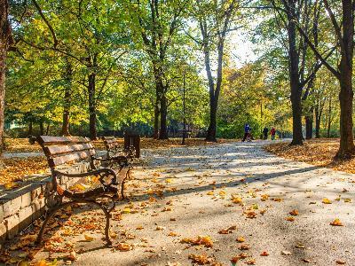 Футошки парк